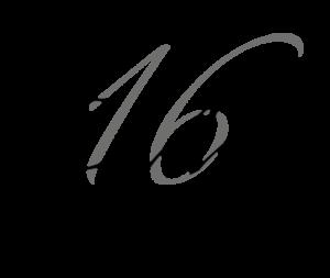logo EDM16